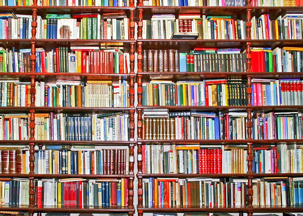 livros bauru
