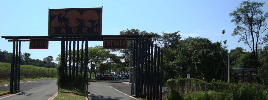 zoologico bauru