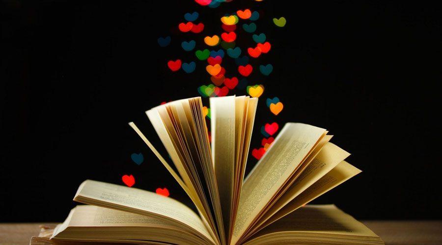 livros-bauru1