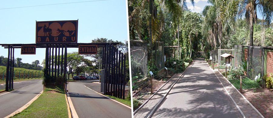 ferias-zoo-home