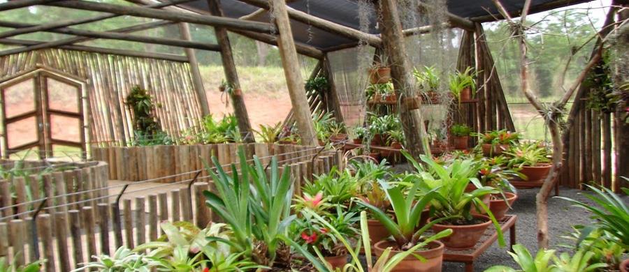 Jardim Botânico de Bauru é sustentável