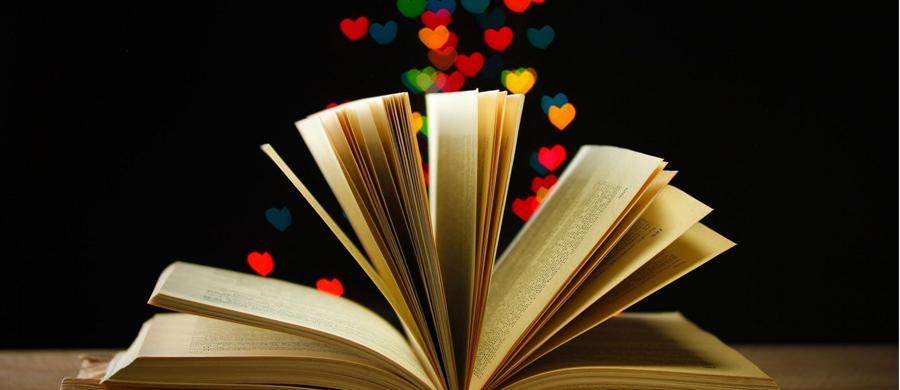 9 dicas de livros dos bauruenses
