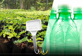 Viveiro Municipal de Bauru arrecada recicláveis