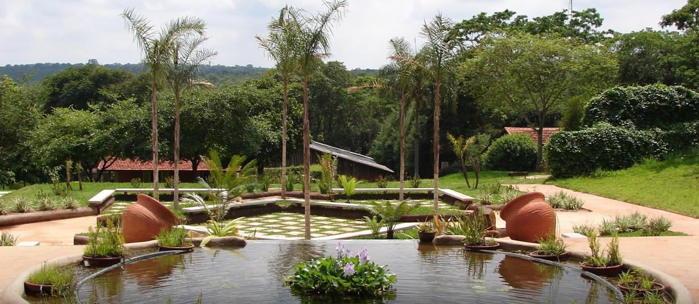 Jardim Botânico de Bauru comemora 24 anos