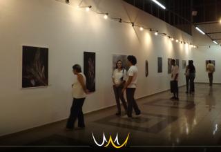 6 exposições gratuitas em Bauru que você não pode perder