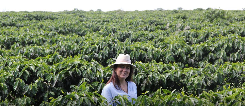 Produtora bauruense coloca seu café entre os 100 melhores do Brasil