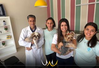 Casa Pet de Bauru oferece o conforto do lar para diminuir o estresse dos animais