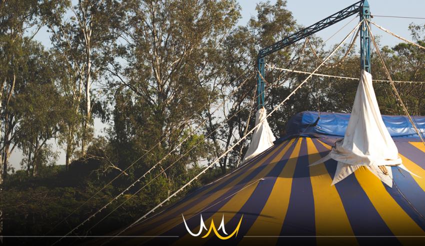 Coluna Juliana Oba: o dia em que eu vivi no circo